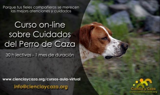 Curso online sobre 'Cuidados Básicos del Perro de Caza'