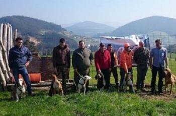 Prueba de trailla sobre jabali salvaje vegadeo 2016