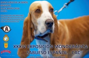 XXXIV EXPOSICIÓN MONOGRÁFICA DEL CLUB DEL SABUESO ESPAÑOL 2018